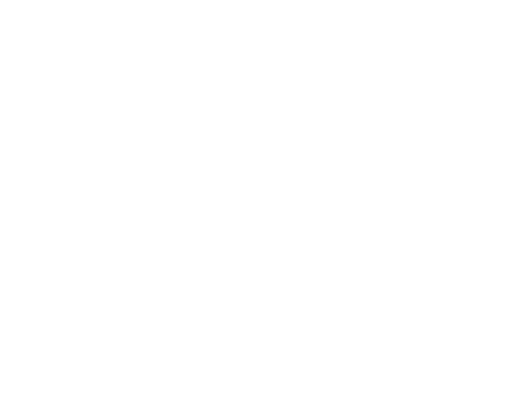 DS Burge and Co Ltd